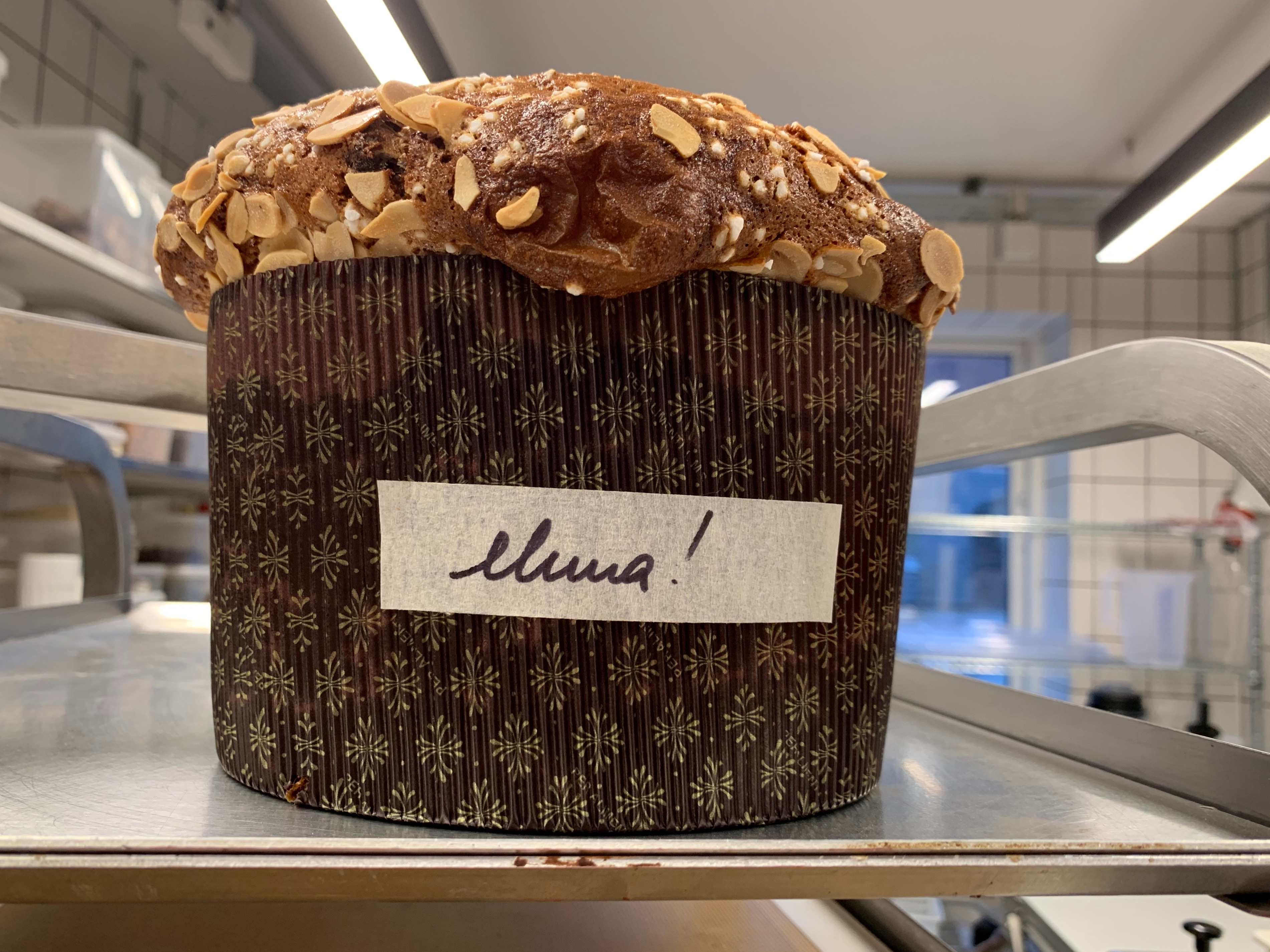 panettone at Hart Bakery